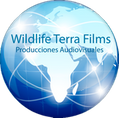 blog wildlife terra films
